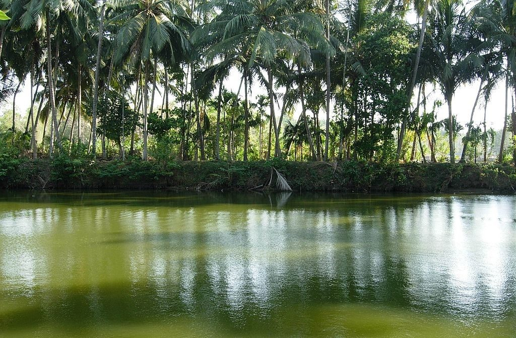 kerala-Villages